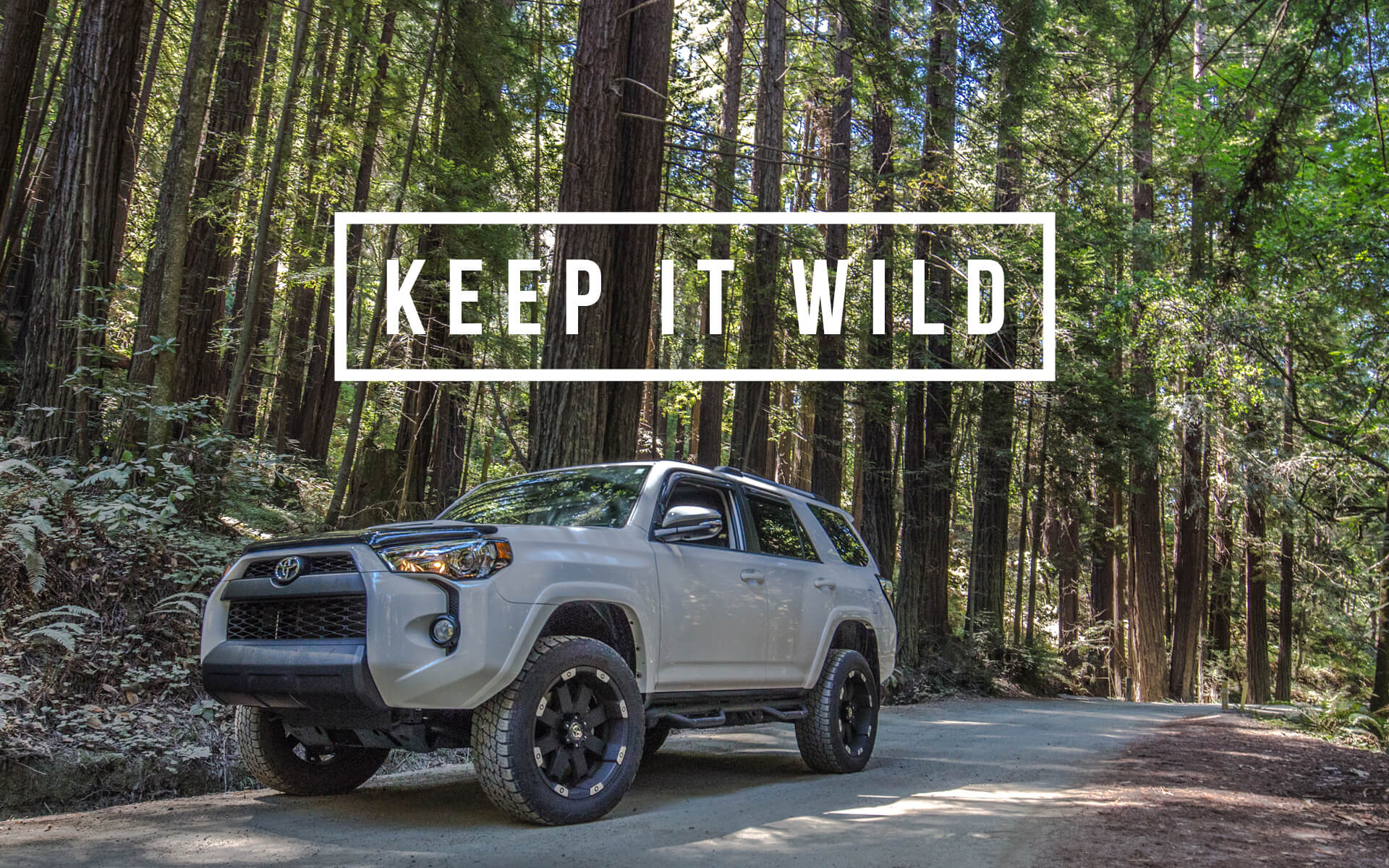 TRD PRO Wallpaper Background - Keep It Wild