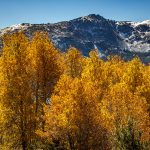 Fall Photography - Caples Lake Mountains