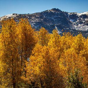 Fall Photography - Caples Lake Mountains