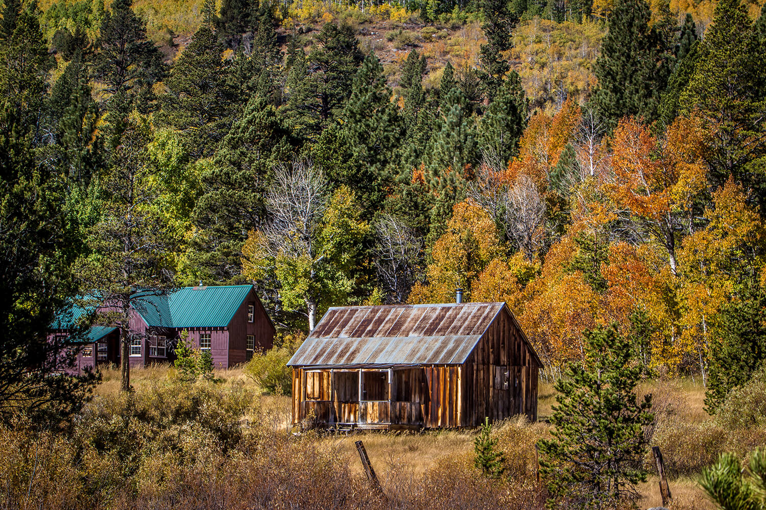 Fall Photography - Red Creek Hope Valley Cabin
