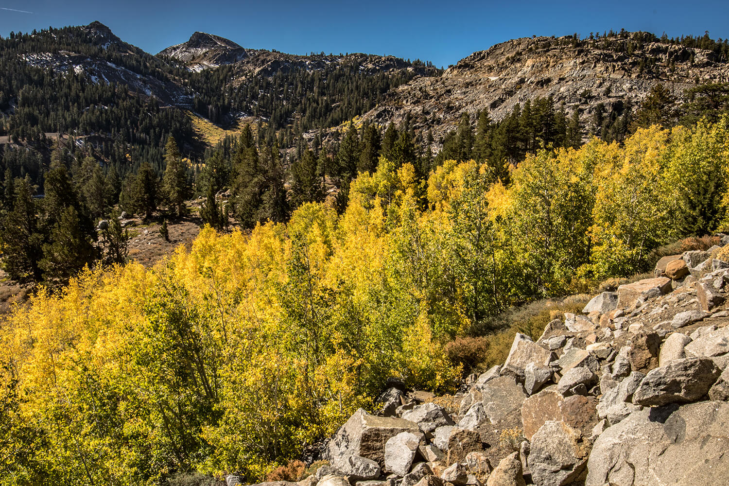 Fall Photography - Carson Pass Highway Fall Color