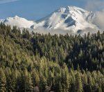 Mt_Shasta_Area_Front_Street_Media_06