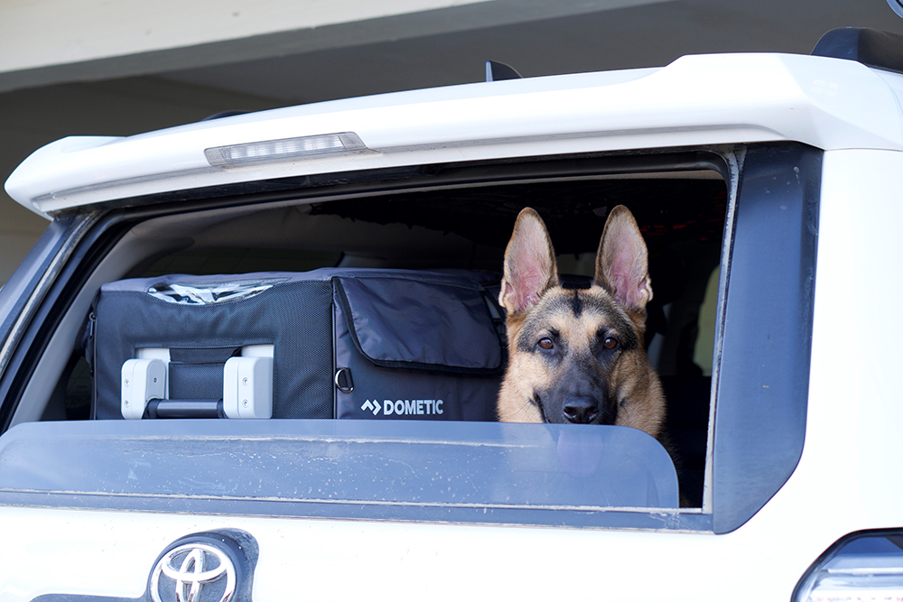 Dometic CFX50 Fridge Review