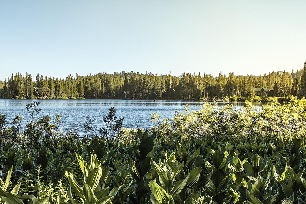 Ice Lakes (Serene Lakes)
