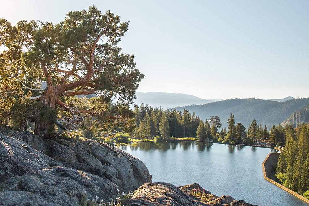Lake Angela - Donner Pass