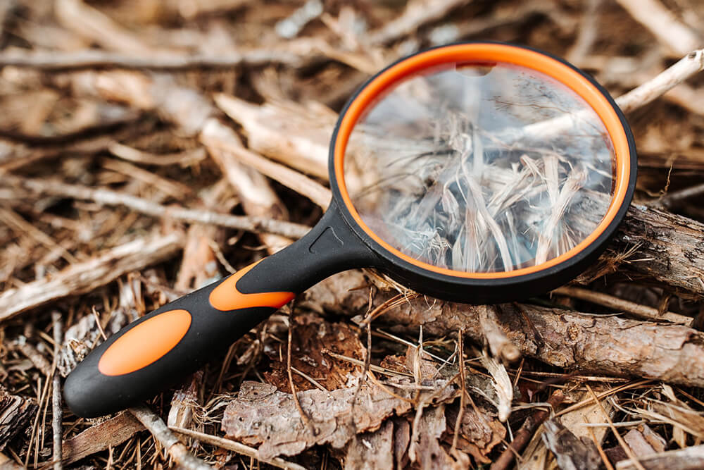 3x Shatterproof Magnifying Glass - Camping Essentials With Kids Under 12